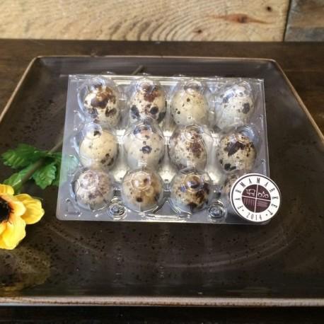 Domáce prepeličie vajíčka